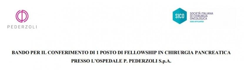 BANDO PER IL CONFERIMENTO DI 1 POSTO DI FELLOWSHIP IN CHIRURGIA PANCREATICA PRESSO L'OSPEDALE P. PEDERZOLI S.P.A.