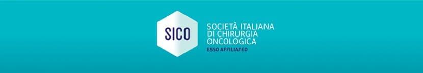 Rinnovo parziale del Consiglio Direttivo SICO (2021-2023) – NEXT PRESIDENT 2023-2025