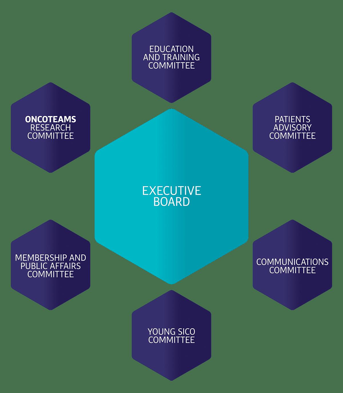 struttura organizzativa sico